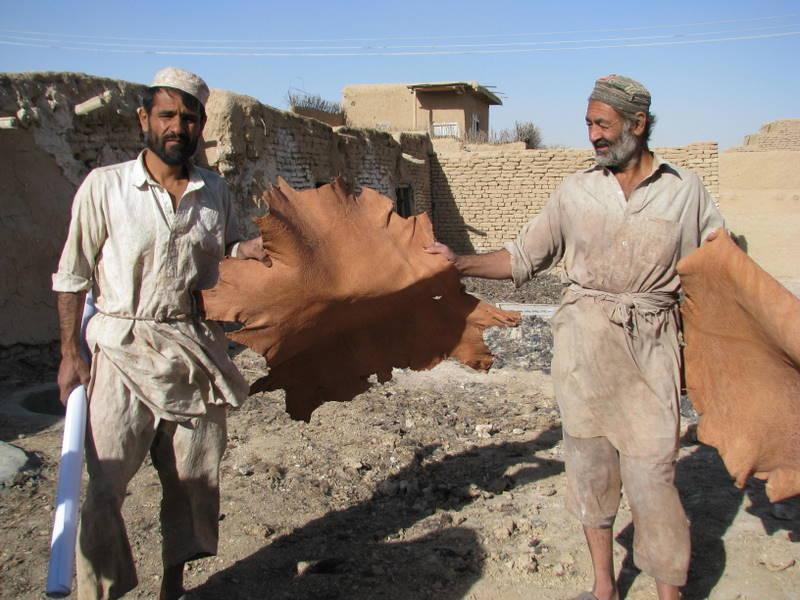 Das tolle natürlich (chromfrei) gegerbte Ziegenleder kann Meister Yaqub nun zu den schönen Ledertaschen von Gundara weiter verarbeiten.