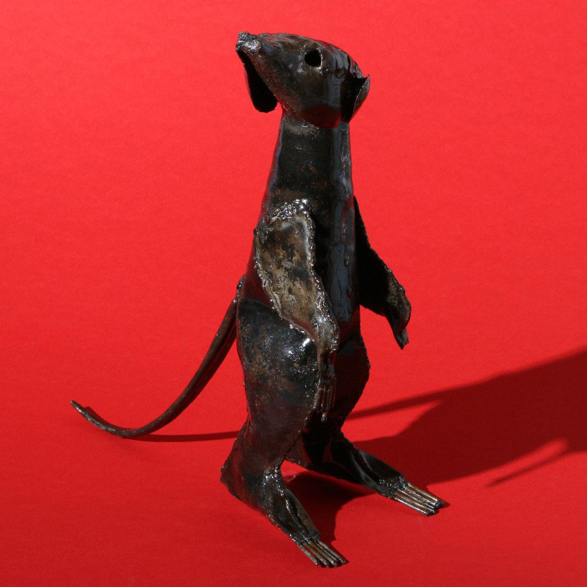 Recyling Meerkats from Zimbabwe