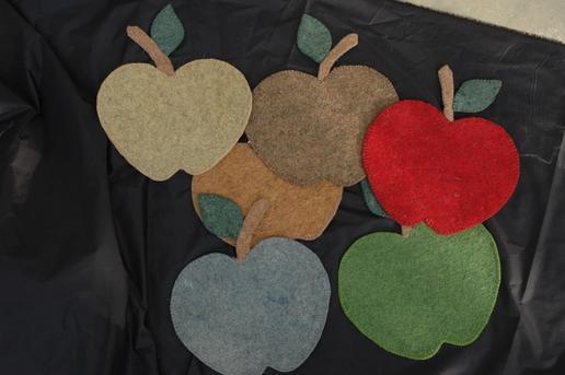 Gundara - Filzuntersetzer-Set Apfel - Platzdeckchen-Set